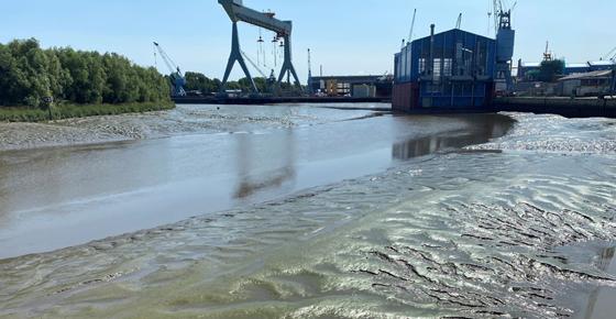 Hochwasserschutz an der Este durch dramatisch zunehmende Verschlickung bedroht