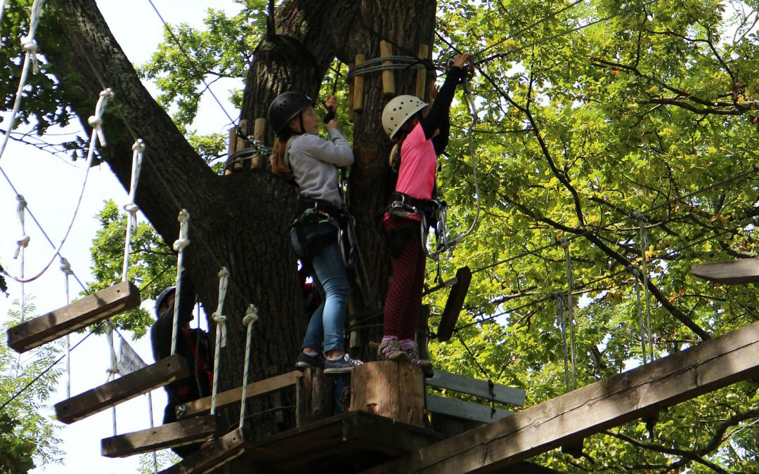 Ferienpass Jork: Bürgerverein fährt in den Hochseilgarten HANSEROCK
